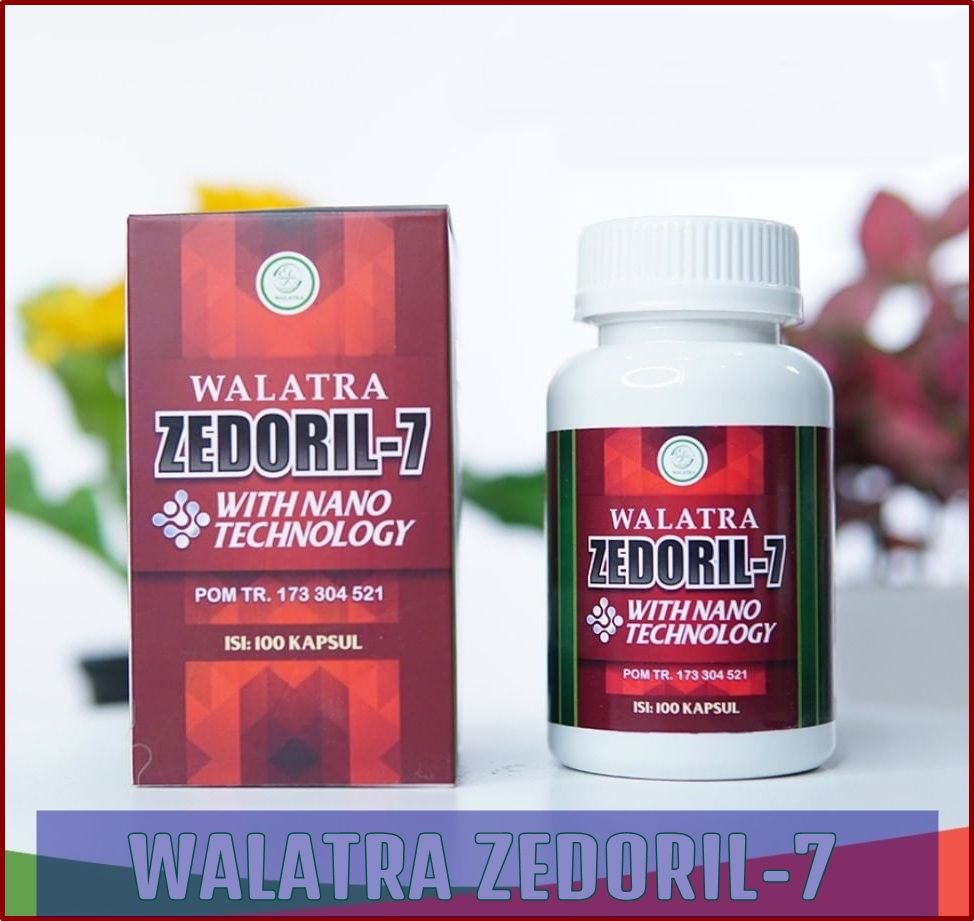 Obat Herbal Walatra Zedoril-7